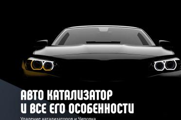 Особенности автомобильного катализатора на простом примере!